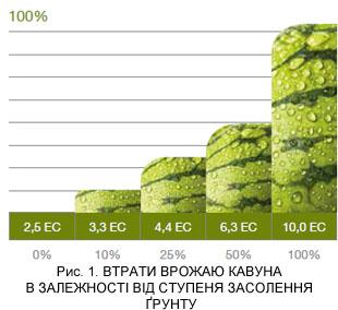 Потери урожая арбуза в зависимости от засолености почвы