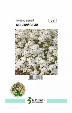 Арабис Альпийский, белый - 3 грамма