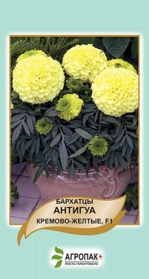 Бархатцы прямостоячие Антигуа, кремово-желтые F1 - 10 семян