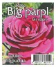 Роза Биг Пeрпл (Big parpl)