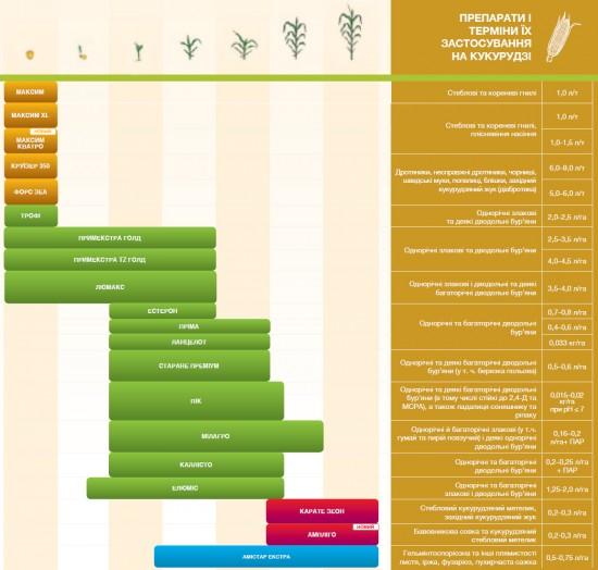 Защита кукурузы