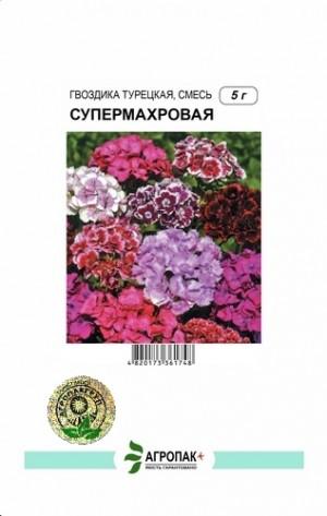 Гвоздика турецкая Супермахровая, смесь - 5 грамм