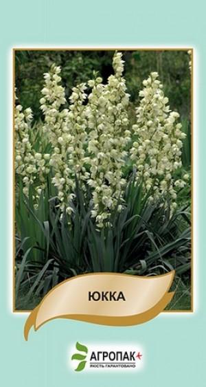 Юкка - 5 семян