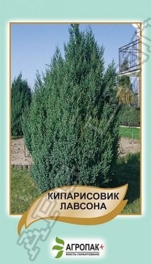 Кипарисовик Лавсона  - 0,1 грамм