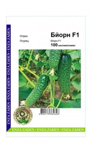 Огурец Бйорн F1 - 100 семян