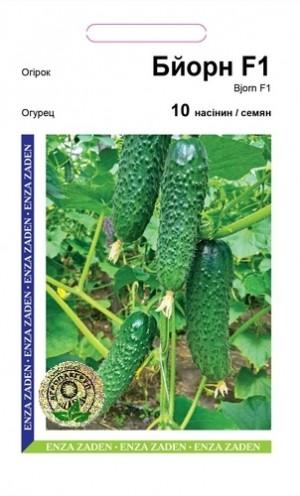Огурец Бйорн F1 - 10 семян