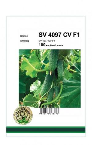Огурец SV 4097 CV F1 - 100 семян