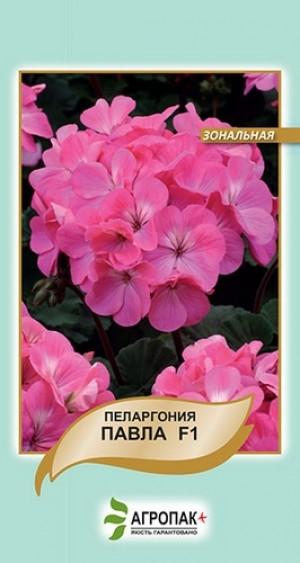 Пеларгония зональная Павла F1 - 5 семян