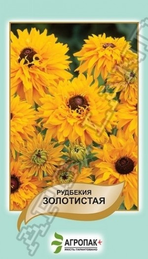 Рудбекия Золотистая  - 0,1 грамм