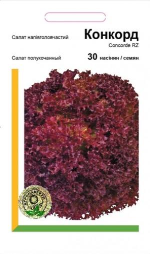 Салат полукочанный Конкорд - 30 семян